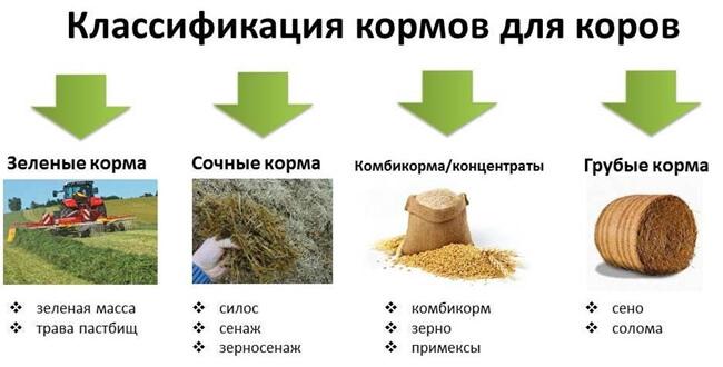 классификация растительных кормов
