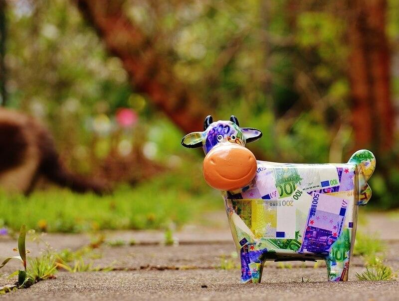 опыт и стратегия в молочном скотоводстве