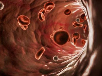 Лейкоз коров и что такое исследование на РИД?